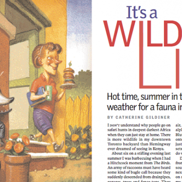 """My Article: Reader's Digest, """"It's a Wild Life"""""""